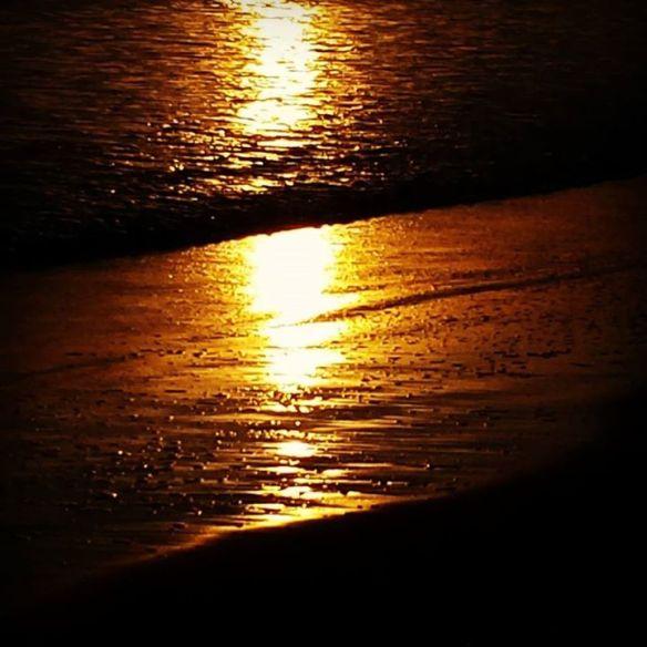 golden light on shore.jpg