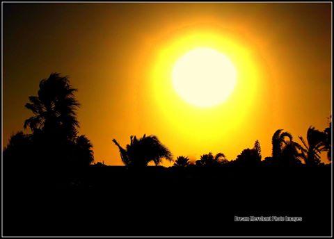 sun-beats-down